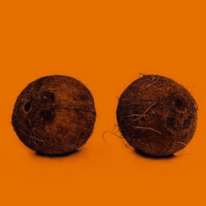 Coconut If sex was a fruit