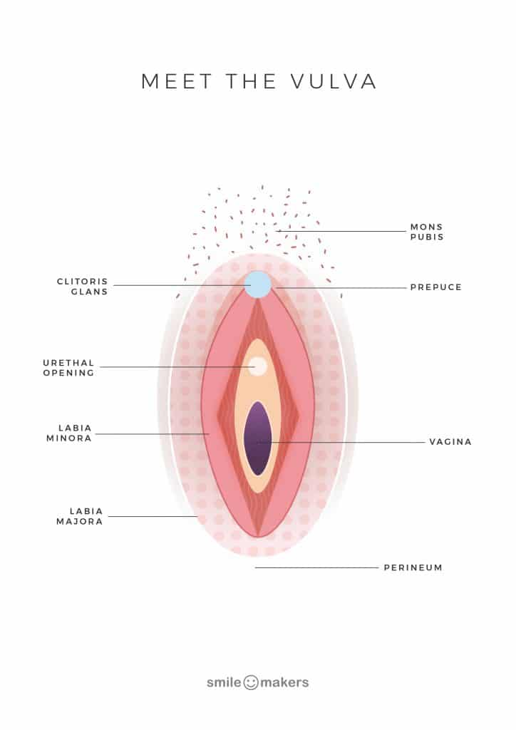 Meet the vulva with no rectum